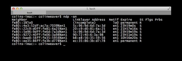 IPv6 Screen Capture